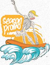 surfer image